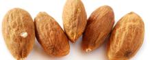 almond salmonella outbreak