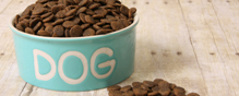 Dog food sold by Diamond is the source of a Salmonella outbreak among people.