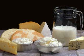 Milk and cheese have been identified as the source of Salmonella outbreaks