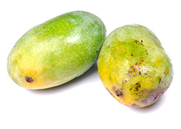 Mangoes source of Salmonella outbreak in California, other states
