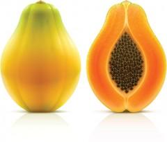 Maradol Papayas linked to Salmonella Outbreak