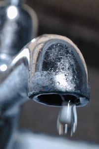 Water can be a source of E. coli outbreaks.